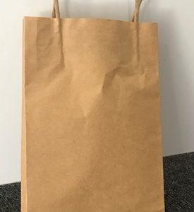 265 x 160 x 50 Paper carry Bag