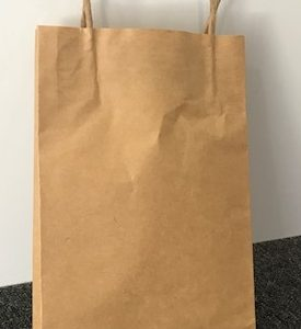 265 x 160 x 50 Paper carry Bag