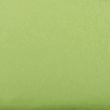 Lime Green tissue paper adelaide, Art, craft, floral